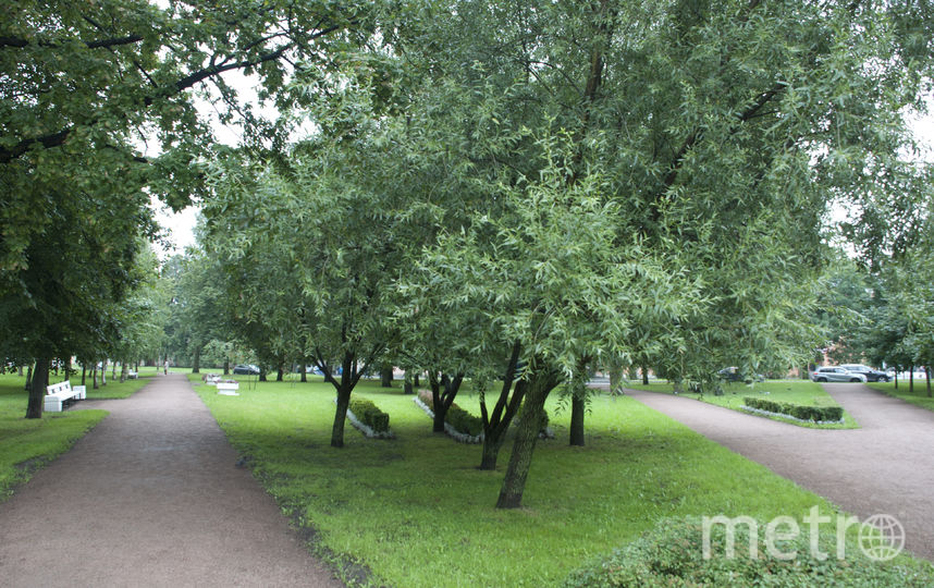 Сад на улице Ткачей. Фото gov.spb.ru/gov/otrasl/blago