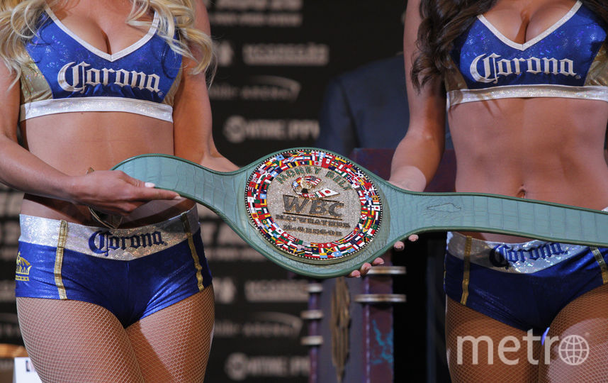 Известны гонорары Мейвезера и Макгрегора за бой в Лас-Вегасе. Фото AFP