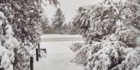 Якутию завалило аномальным августовским снегом: фото из соцсетей