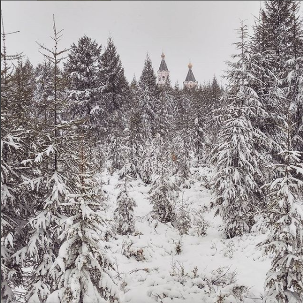 Скриншот instagram.com/denissaperov/.