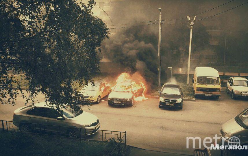 Фото: megapolisonline.ru.