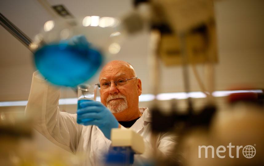Учёный. Фото Getty