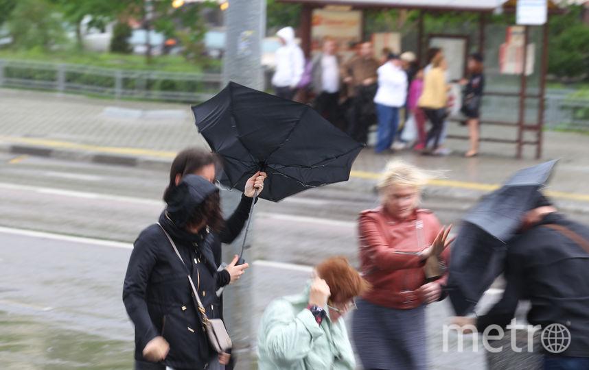 """Гроза и ветер с порывами до 17 м/с ожидаются в Москве. Фото Василий Кузьмичёнок, """"Metro"""""""