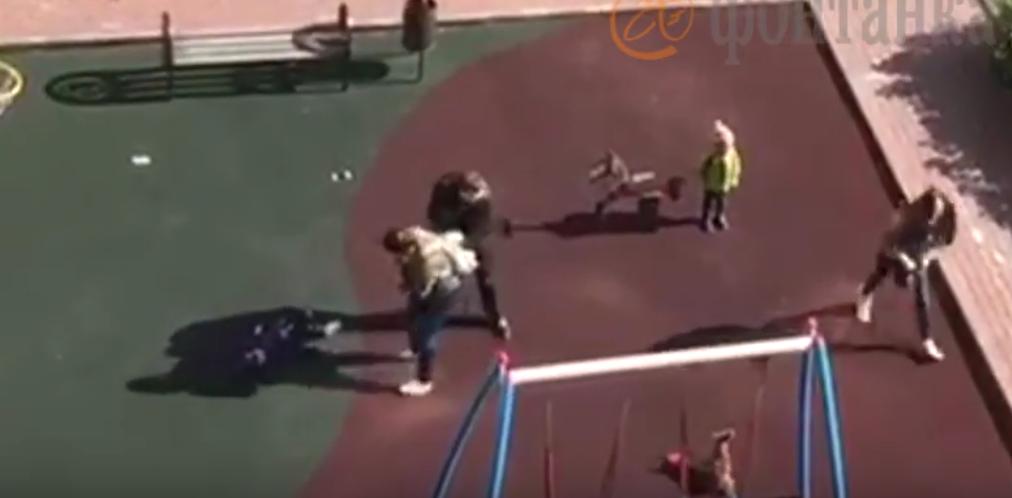 Женщины на детской площадке пустились врукопашную. Фото Скриншот YouTube