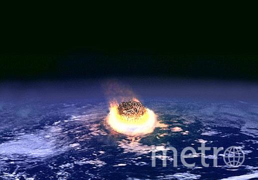 Мел-палеогеновое вымирание. Фото CREATIVE COMMONS