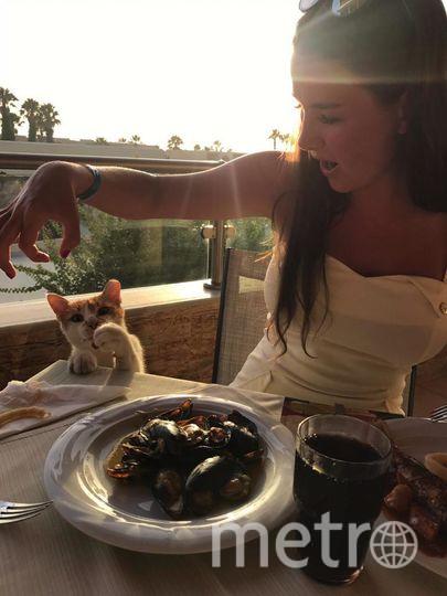 Фото сделано в Греции на острове Кос в ресторане Морской кухни, очень прожорливый котик составил нам с моим молодым человеком приятную компанию! Фото Пелевина Екатерина Сергеевна 25 лет