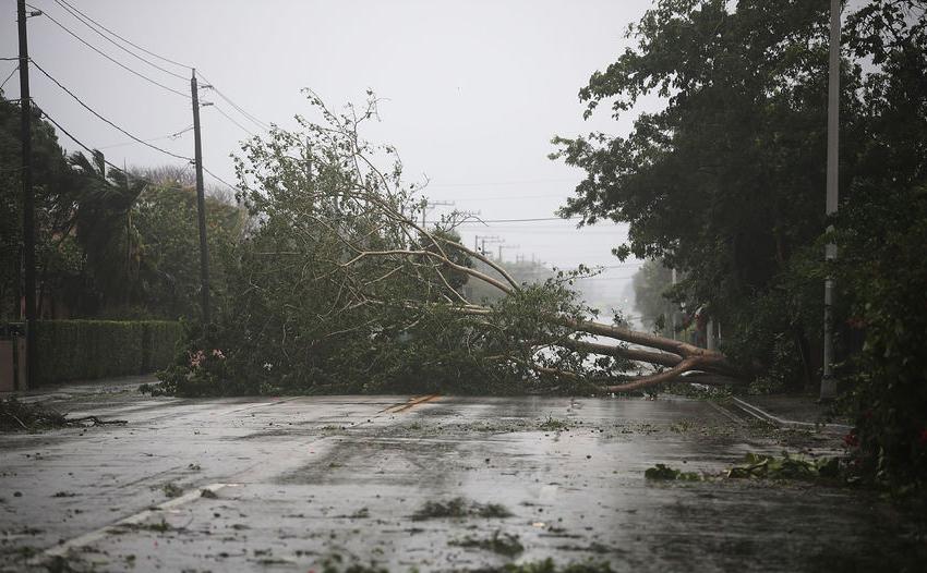 """Ураган """"Ирма"""" сильнее всего ударит по Санкт-Петербургу. Фото AFP"""