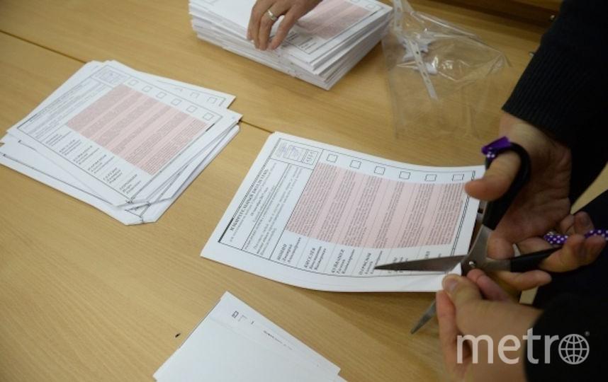 В России прошли выборы губернаторов: Итоги голосования. Фото РИА Новости