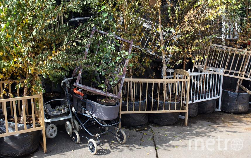 """Войти в музей можно будет по небольшим боковым лестницам. Опавшие с берёз листья сознательно не будут убирать с земли – они являются частью задумки автора и символом неизбежного увядания. Фото Василий Кузьмичёнок, """"Metro"""""""