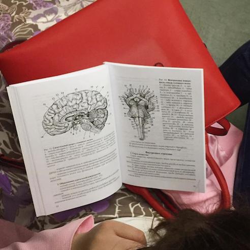 Девушка изучает строение мозга на латыни. Фото Instagram @sadbeetle