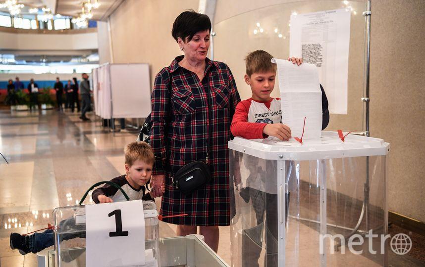 Выборы. Фото AFP