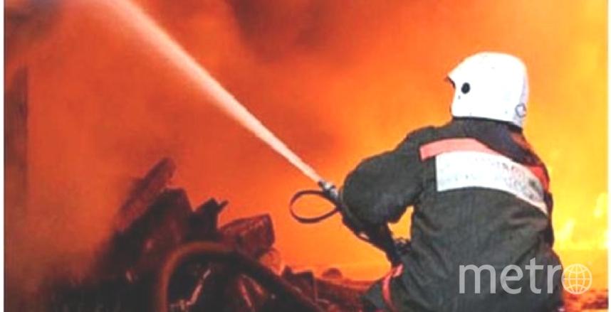 При пожаре в Сосновом Бору никто не пострадал.