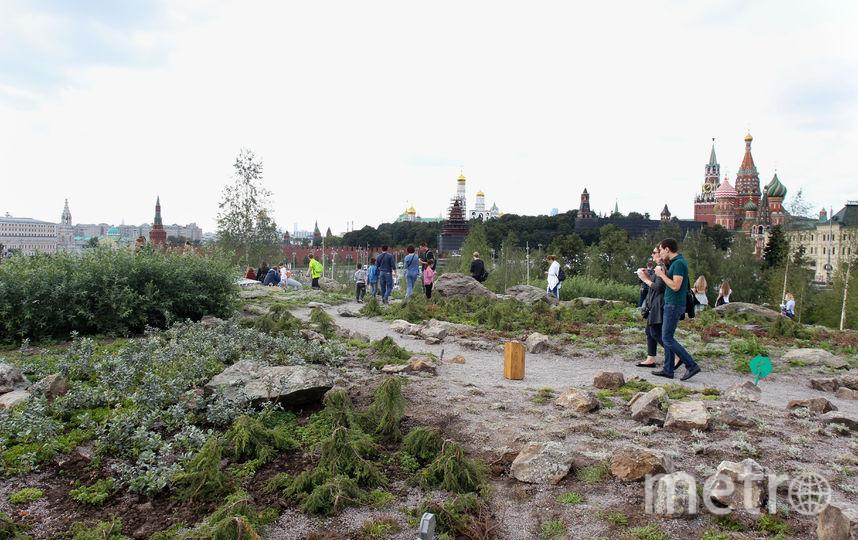 """В """"Зарядье"""" вандалы уничтожили почти 10 000 растений за три дня. Фото Василий Кузьмичёнок, """"Metro"""""""