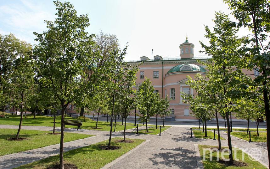 Парк Мосгордумы. Фото Василий Кузьмичёнок