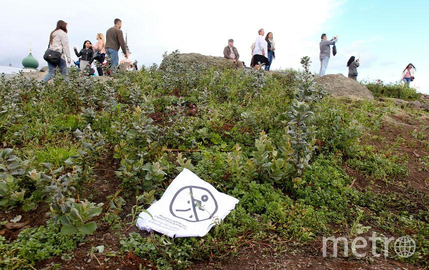 Посетители гуляют рядом с сорванной табличкой, запрещающей ходить в этом месте. Фото Василий Кузьмичёнок