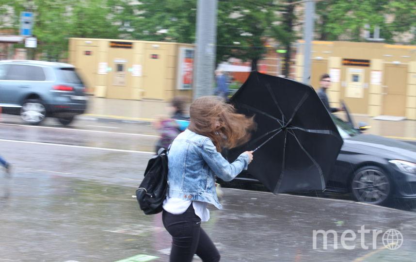 Штормовой ветер бушует в Москве. Фото Василий Кузьмичёнок