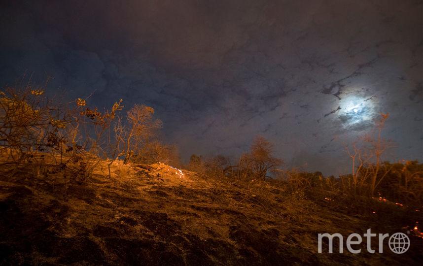 """Учёные обнаружили """"вторую Луну"""". Фото Getty"""