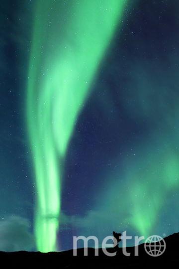 Северное сияние в Исландии. Фото Istockphoto