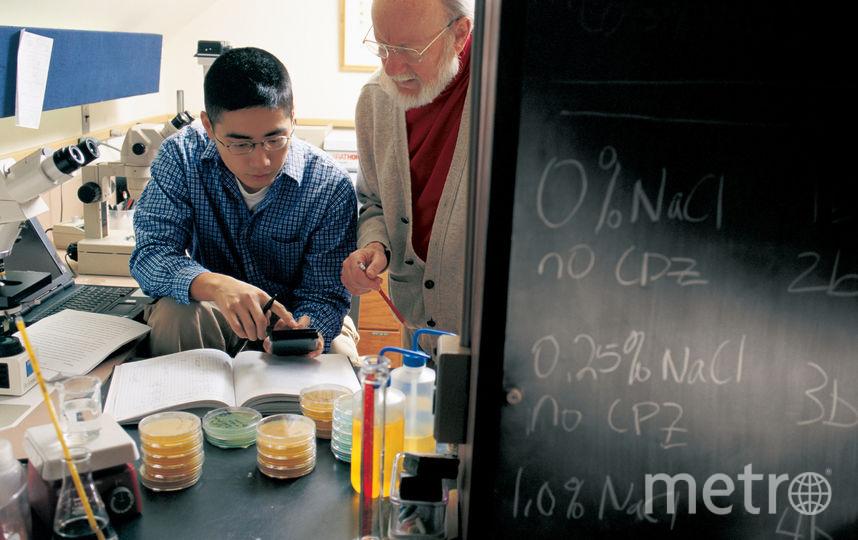 Учёные. Фото Getty