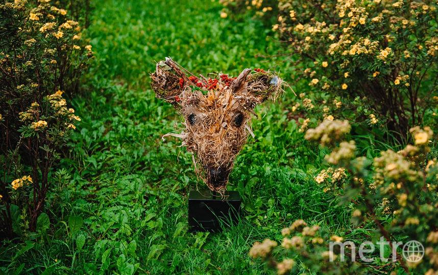 Мишка из травы. Фото Предоставлено организаторами выставки.