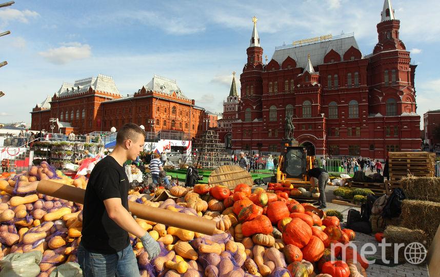 """100 разных сортов сыра смогут попробовать посетители фестиваля. Фото Василий Кузьмичёнок, """"Metro"""""""