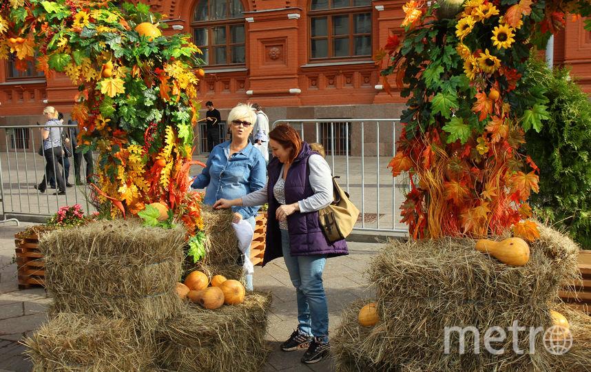В столицеРФ откроется гастрономический фестиваль
