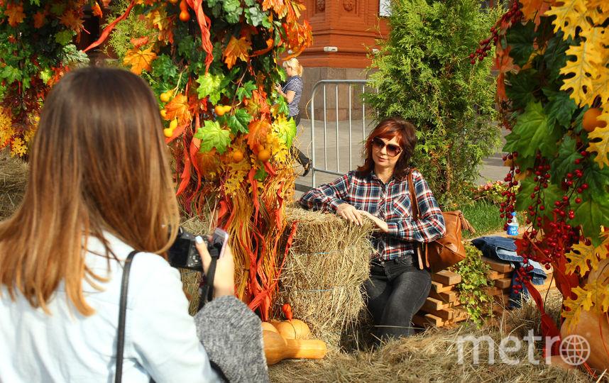 Нафестиваль «Золотая осень» в столице привезут 200 видов сыра