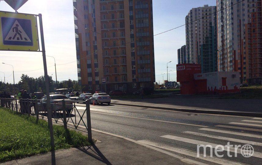 Насевере Петербурга полицейская машина сбила ребенка— свидетели
