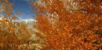 День осеннего равноденствия 2017: Приметы и традиции