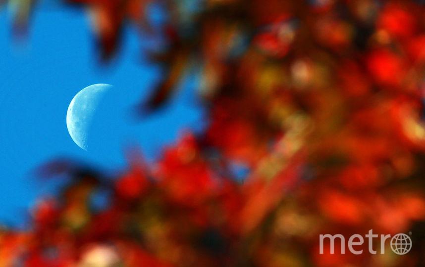 День осеннего равноденствия 2017: Приметы и традиции. Фото Getty