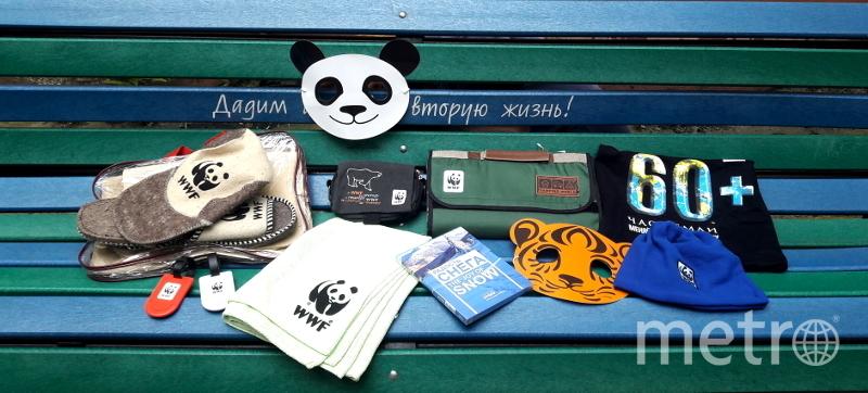 Панда-ярмарка.