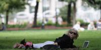 Гидрометцентр: В выходные в Москве будет тепло и солнечно