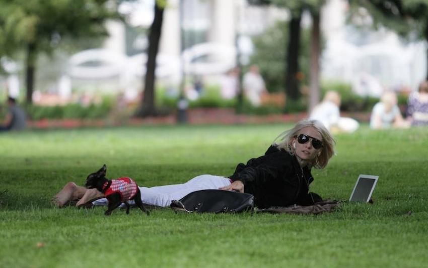 """Синоптики обещают солнечные выходные в Москве. Фото Андрей Свитайло, """"Metro"""""""