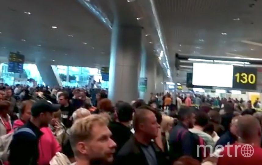 Домодедово. Фото Скриншот видео  Instagram/nataliakarpinskaia5866