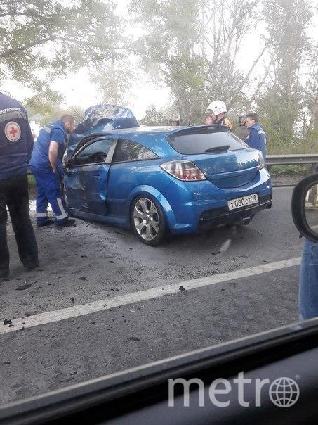 Смертельное лобовое в Петербурге: начата проверка. Фото vk.com/avto.kolpino