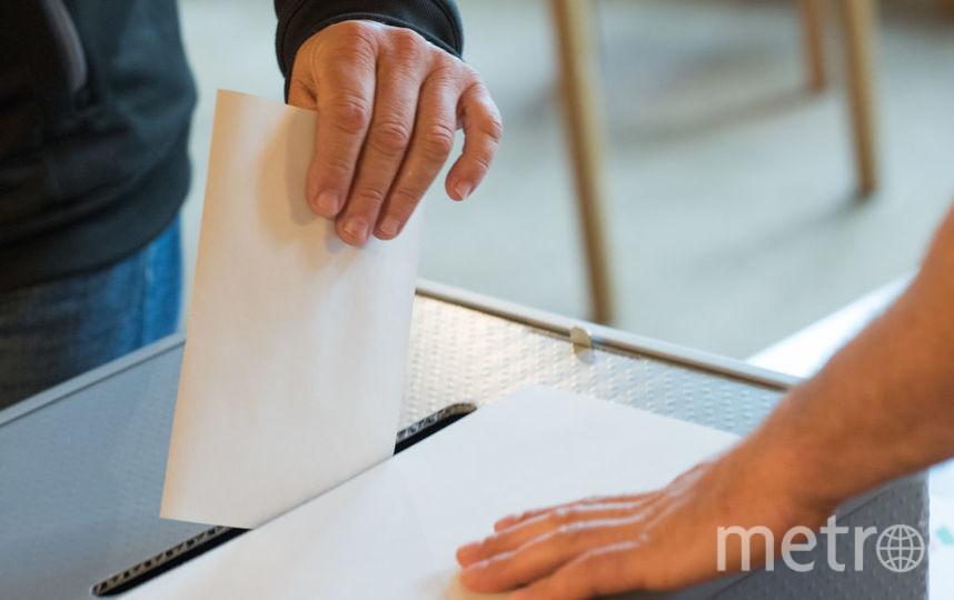 В Германии проходят выборы правительства. Фото Getty