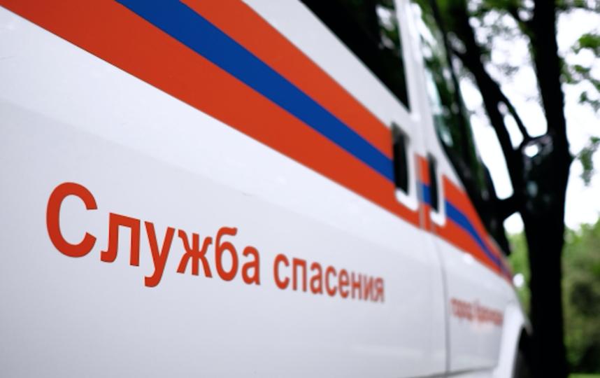 МЧС России. Фото РИА Новости