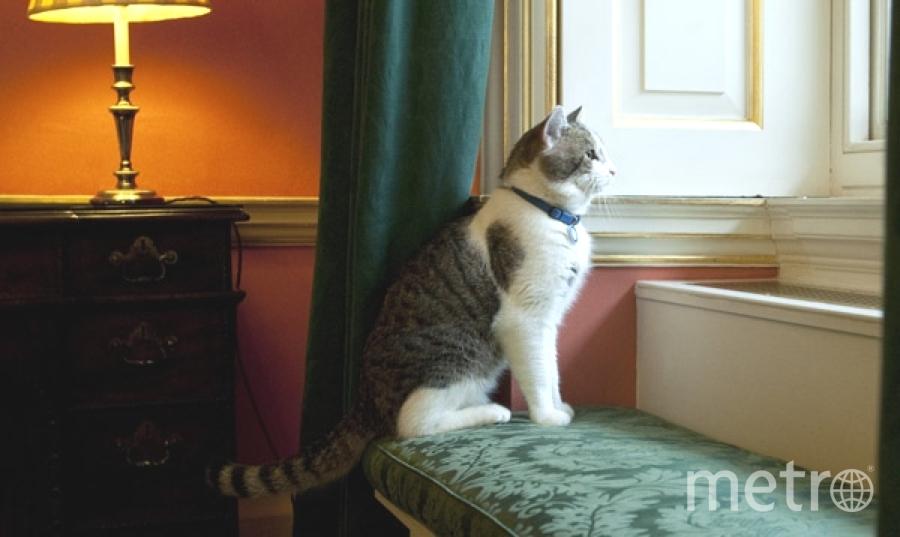 В квартирах горожан стало комфортно. Фото Getty