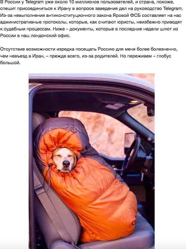 Фото из ВКонтакте Дурова. Фото vk.com