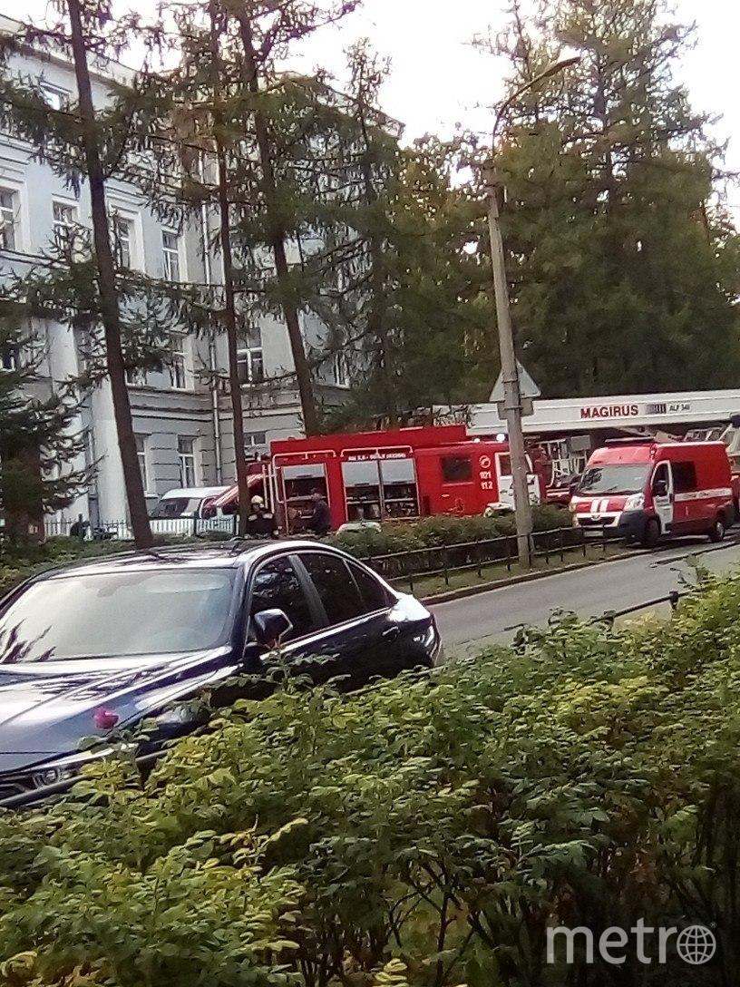 Пожар произошел в Пушкине днем 28 сентября. Фото ДТП/ЧП