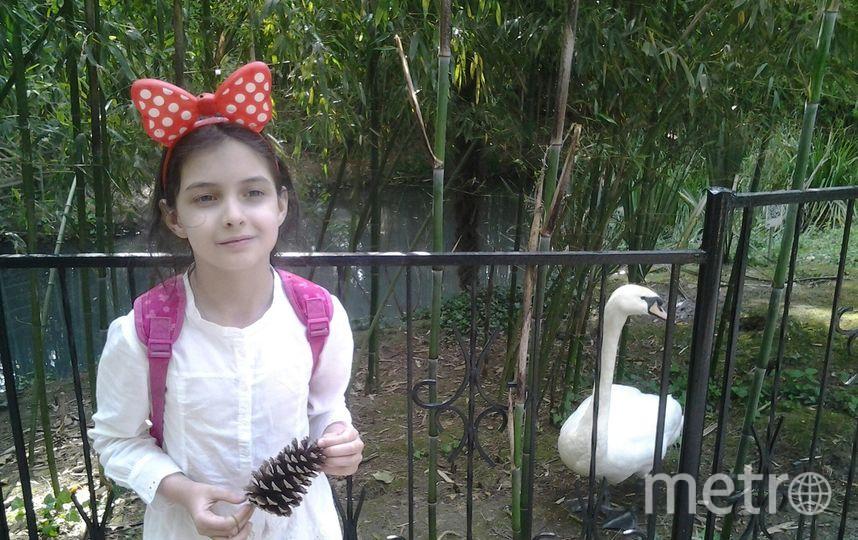 На фото моя дочь, Хворова Арина, 8 лет. В Сочинском дендрарии. Фото  Зухра Хворова