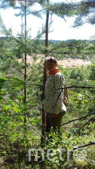 Отпуск я провела в деревне. Я люблю походы в лес. Елена Калинина.