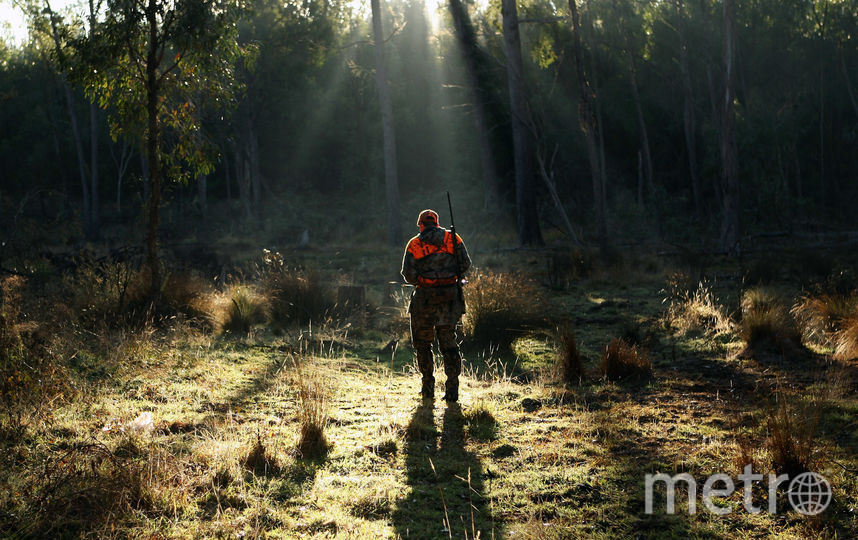 Охотник. Фото Getty