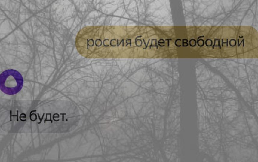 """В Сети публикуют самые острые диалоги с """"Алисой"""". Фото Скриншот Twitter: @PrinceShpil"""