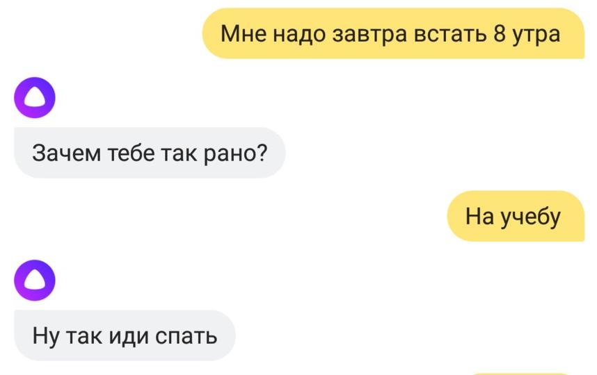 """В Сети публикуют самые острые диалоги с """"Алисой"""". Фото Скриншот Twitter: @BizonElder"""