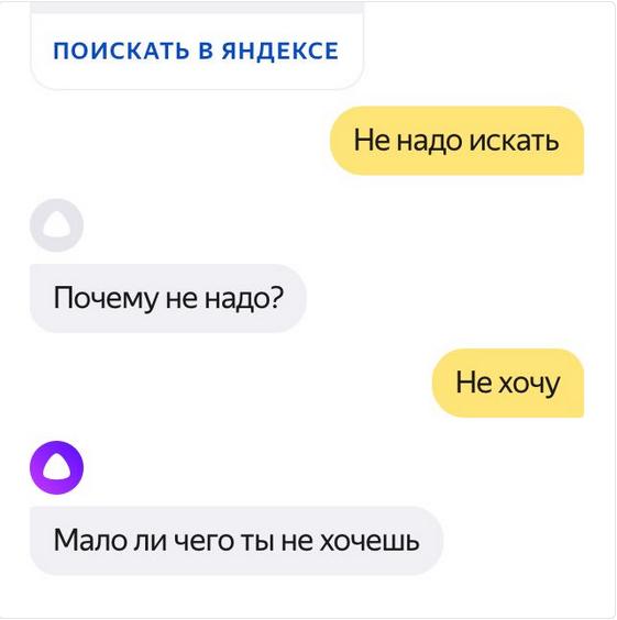 """В Сети публикуют самые острые диалоги с """"Алисой"""". Фото Скриншот Twitter: @Dimk_A98"""