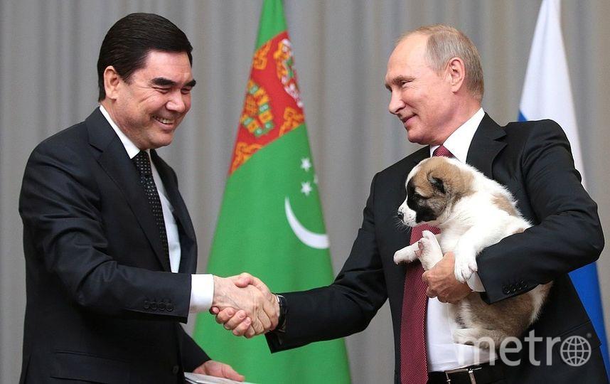 Владимир Путин получил в подарок милого щенка от президента Туркмении Гурбангулы Бердымухамедова. Фото http://kremlin.ru/