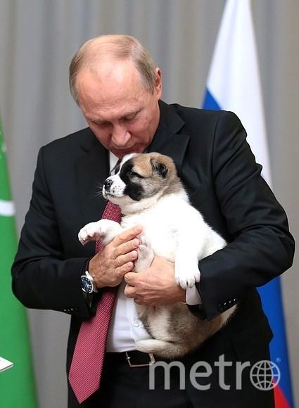 Путину подарили щенка. Фото http://kremlin.ru/