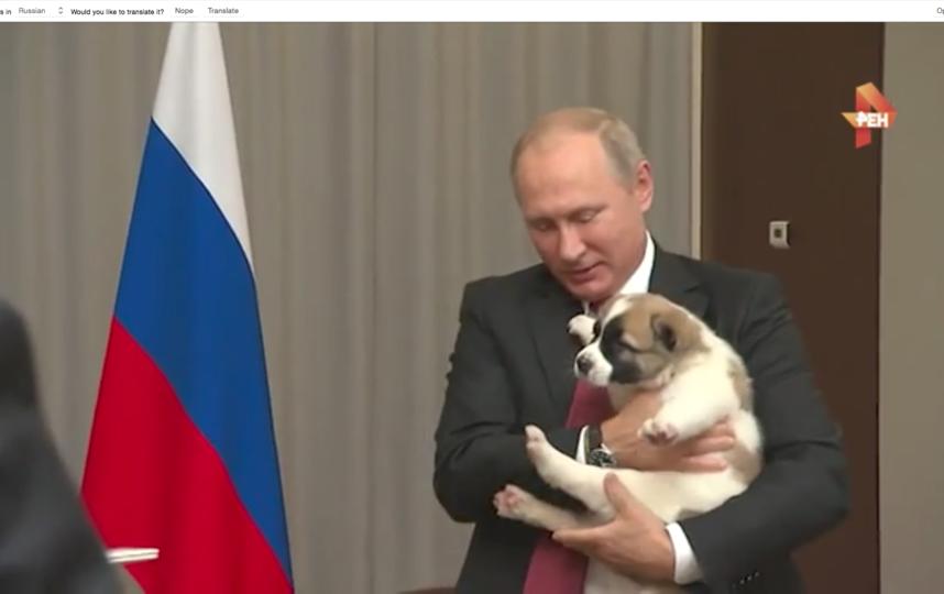скрин-шоты видео. Фото http://kremlin.ru/
