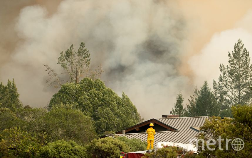 В Калифорнии бушуют лесные пожары. Фото AFP